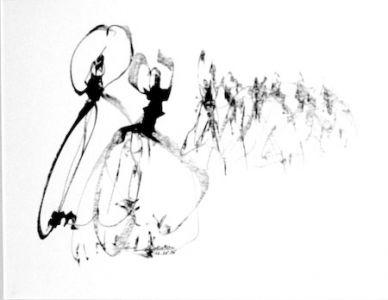 17 Flamenco2