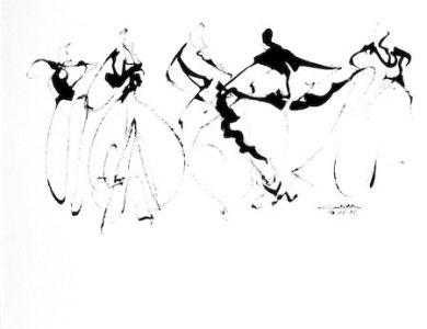 17 Flamenco3